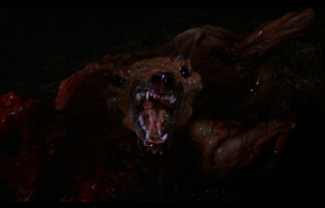 The Thing (Dog)